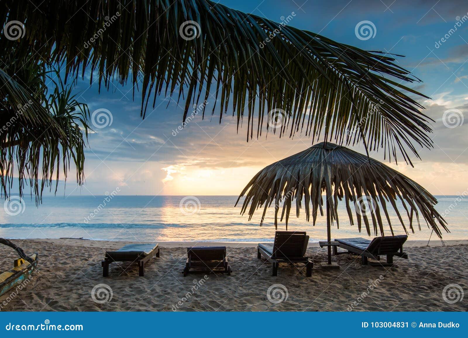 Sun loungers with umbrella on the beach, sunset