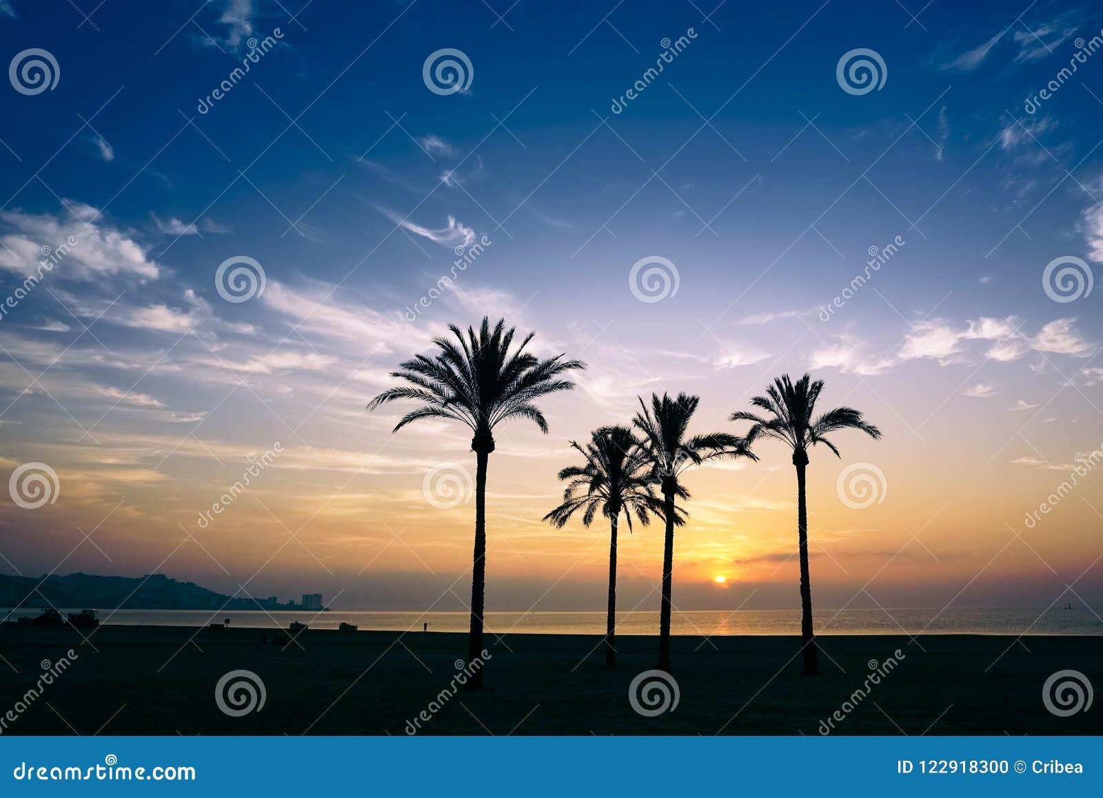 The sun rising over the horizon