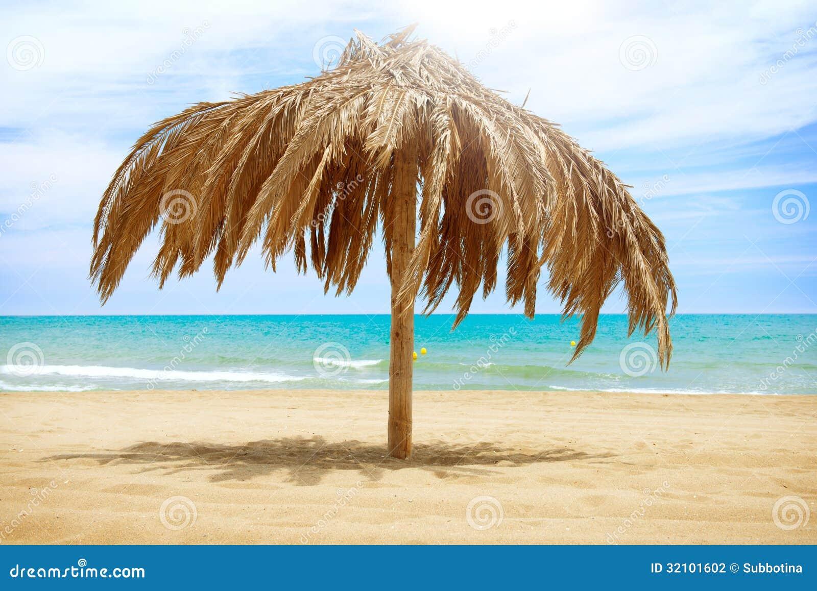 Sun Roof Beach Umbrella