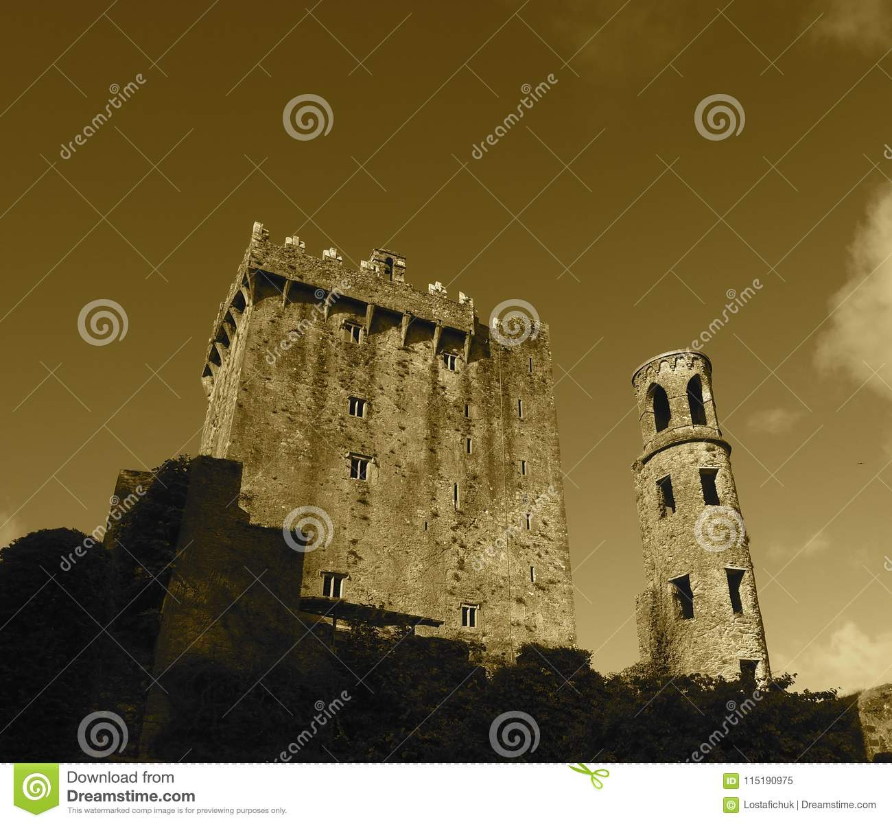 Blarney Castle With Tower