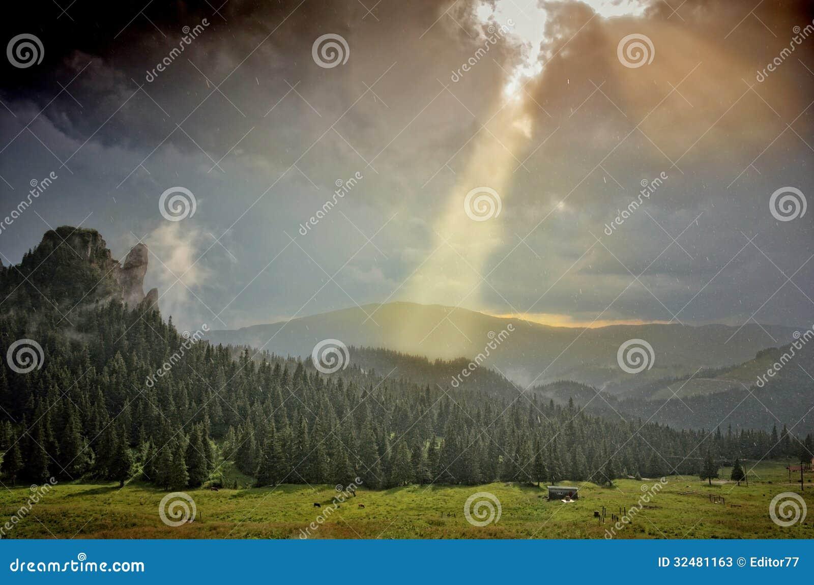Sun Shower Over Mountain Fir Forest Stock Photos  Image 32481163 ~ Sun Shower Eli_082440