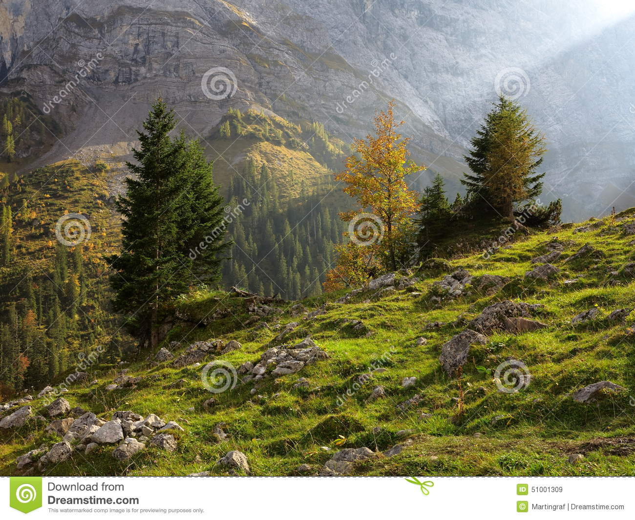 Sunbeam in harsh mountain valley by fall colors