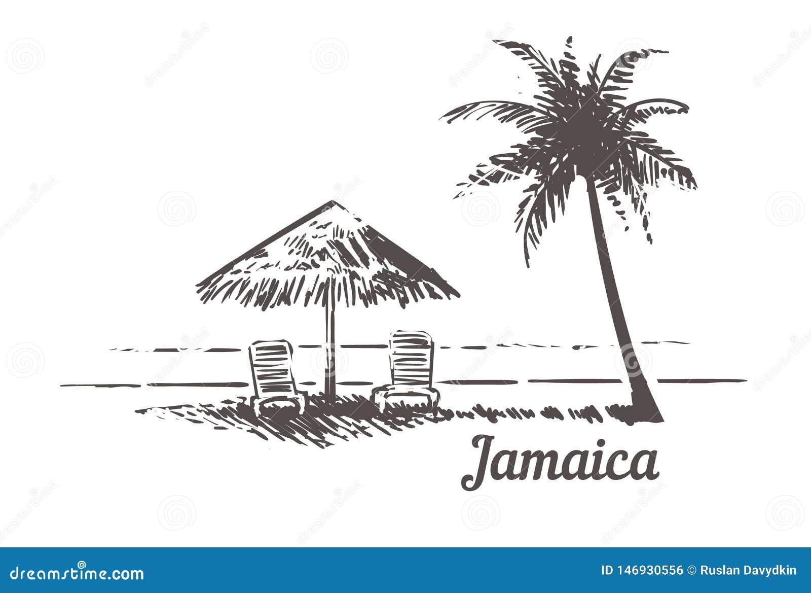 Sunbeds del bosquejo de Jamaica debajo del parasol de playa, Palm Beach Ejemplo exhausto del vector del vintage de la mano de Jam