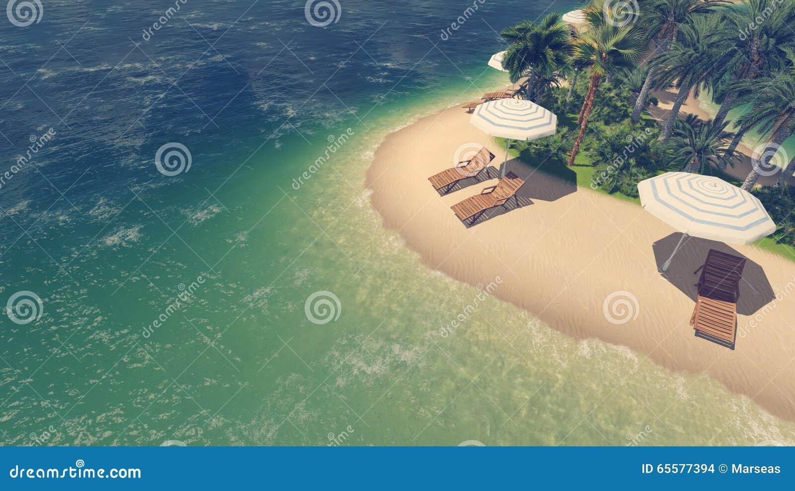 Sunbeds, parasóis e palmas na praia tropical
