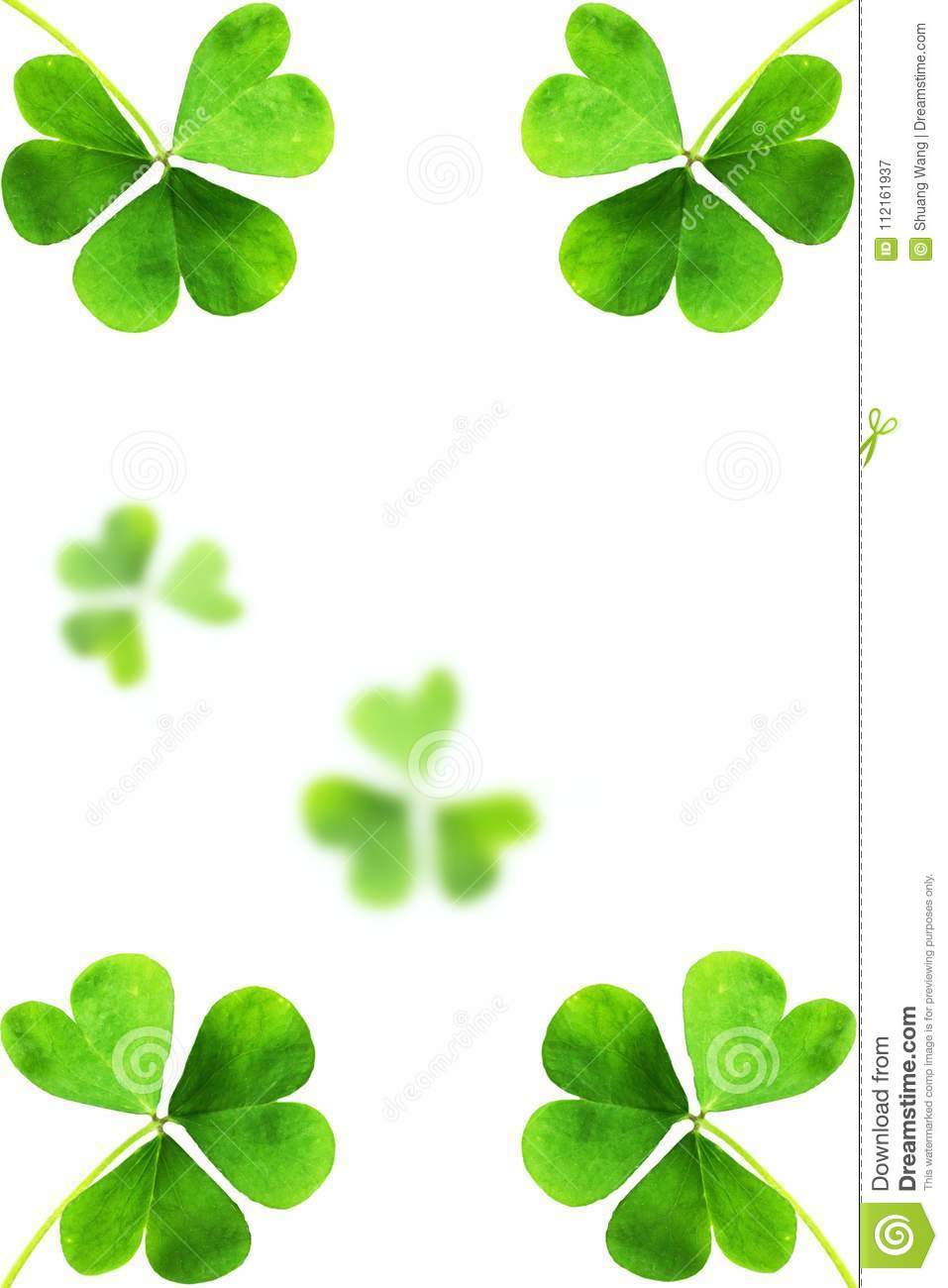 Emplate Design banner on St. Patrick`s Day