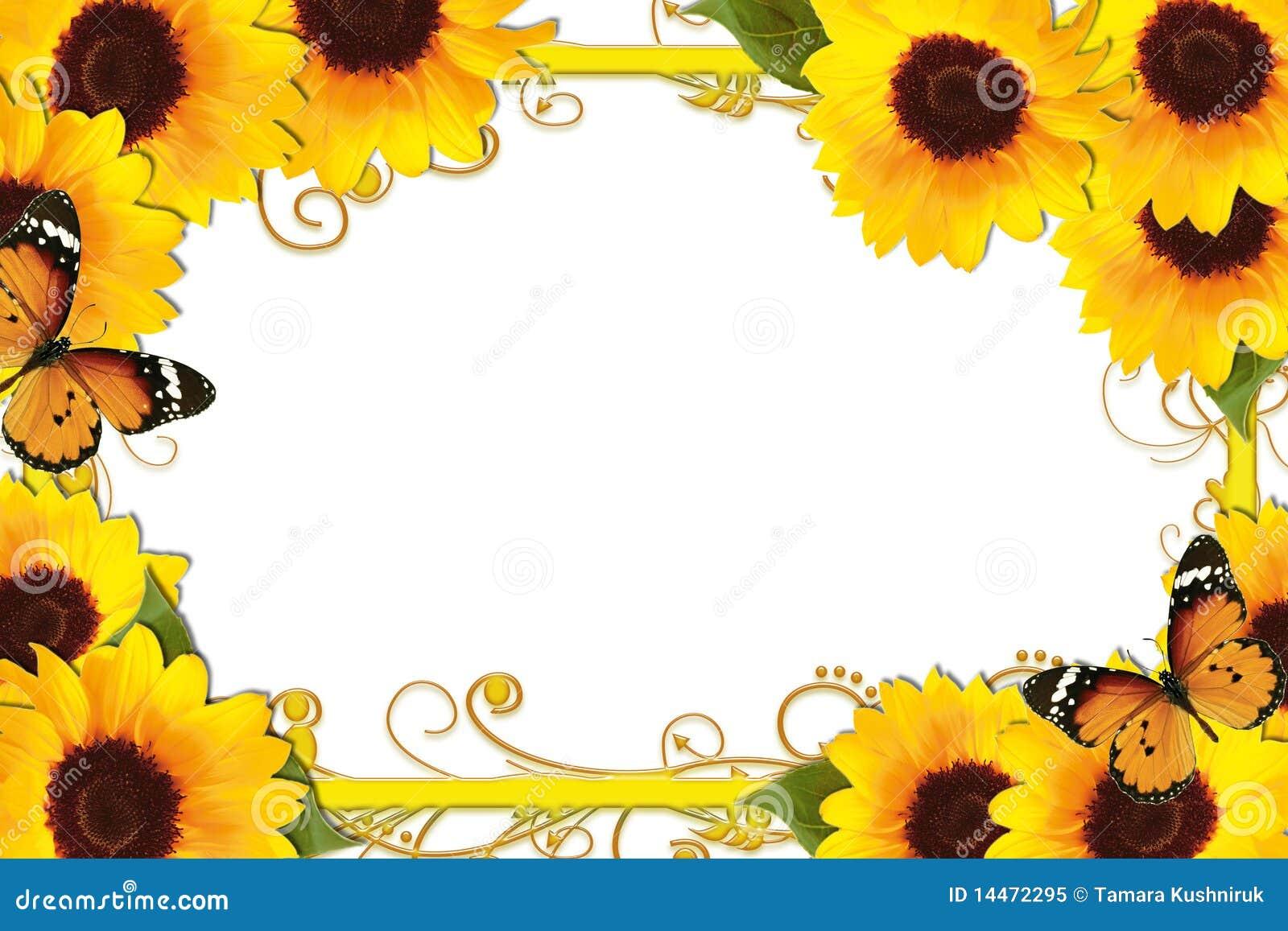 Royalty Free Stock Photo: Sunflower Border. Image: 14472295