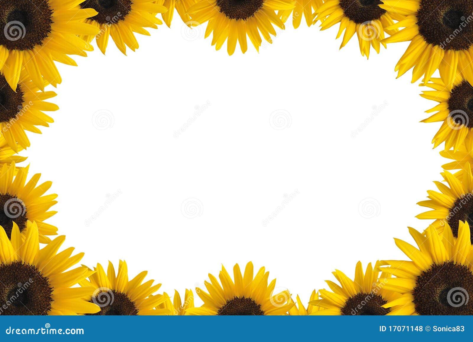 Sunflower Frame Stock Images - 3,718 Photos