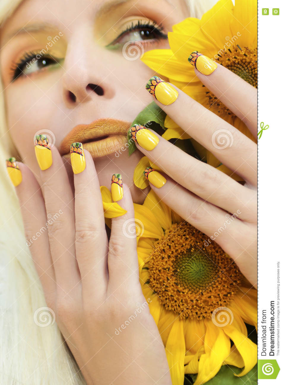 Sunflower Nail Design Stock Image Image Of French Backgrounds