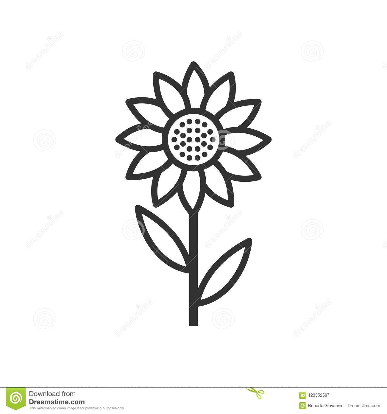 Sunflower Outline Flat Icon on White