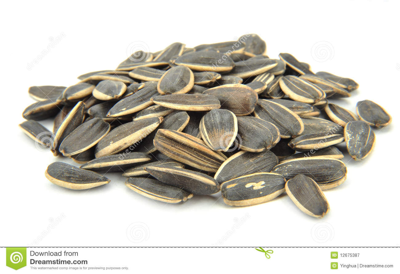 david sunflower seeds clipart - photo #20