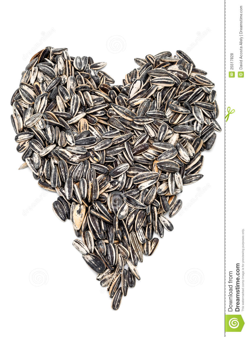 david sunflower seeds clipart - photo #39