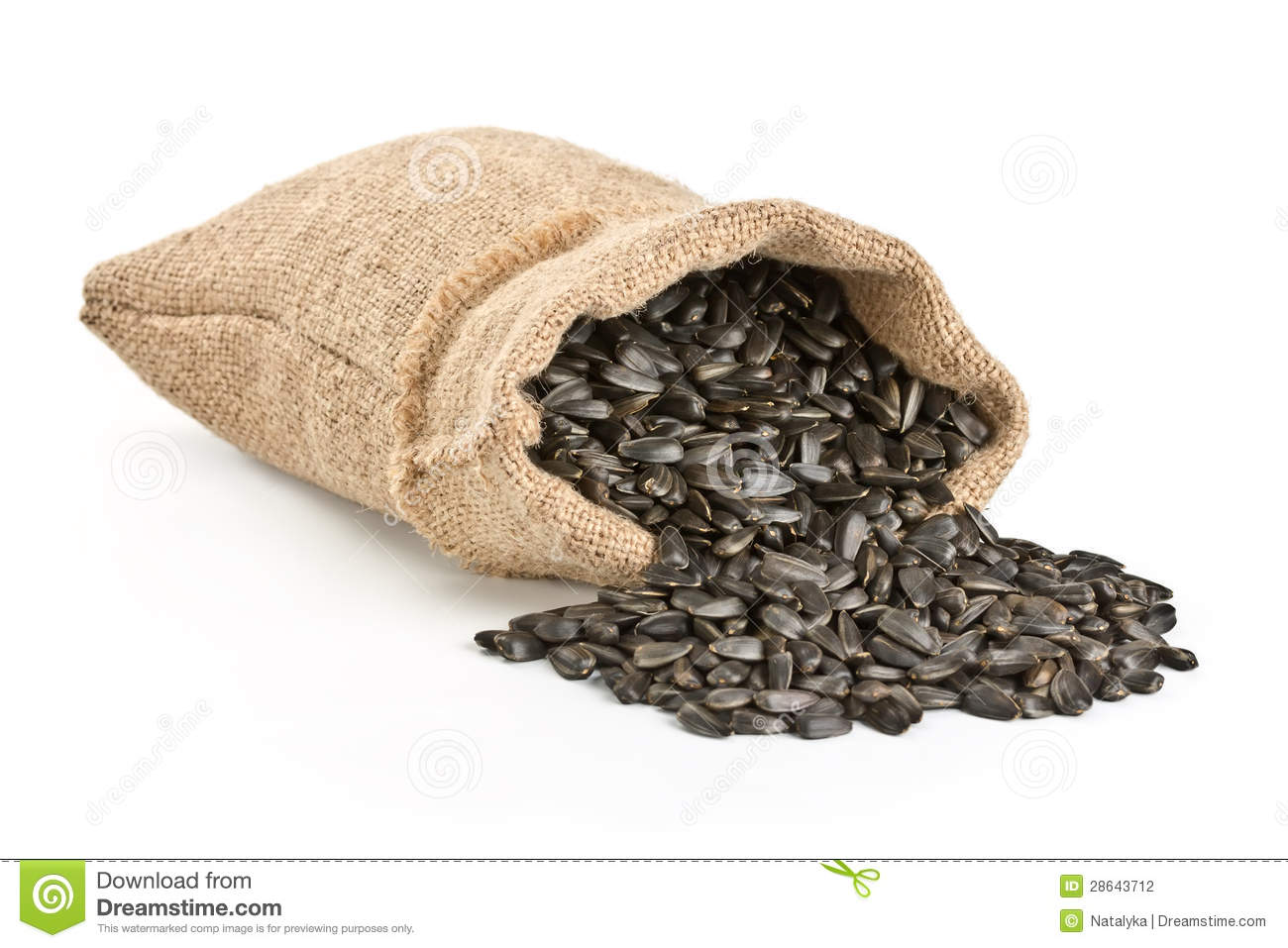 Sunflower Seeds Poured Out Of A Bag Stock Photography