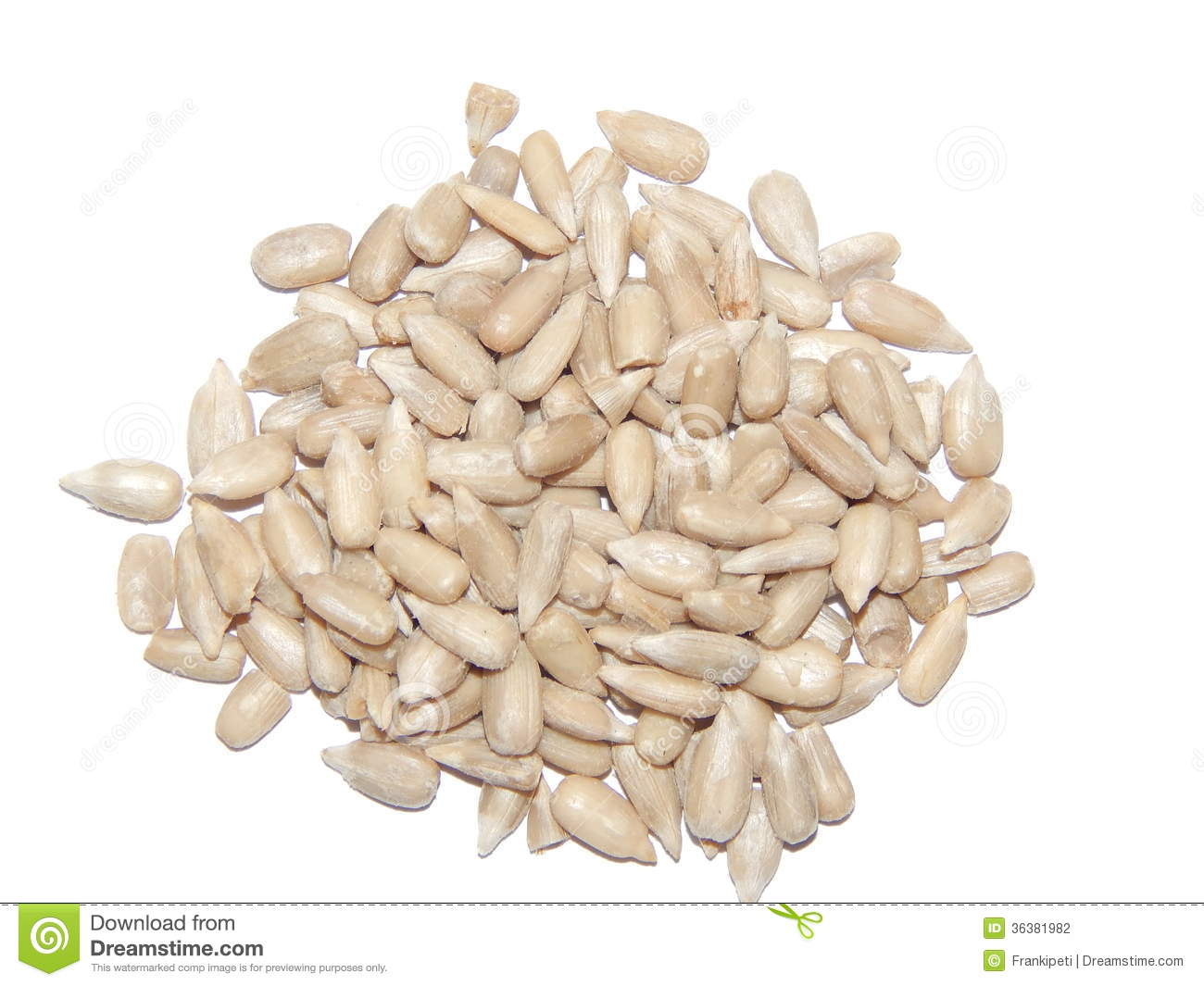 Sunflower Seeds Stock Photography - Image: 36381982 Sunflower Vector Black And White