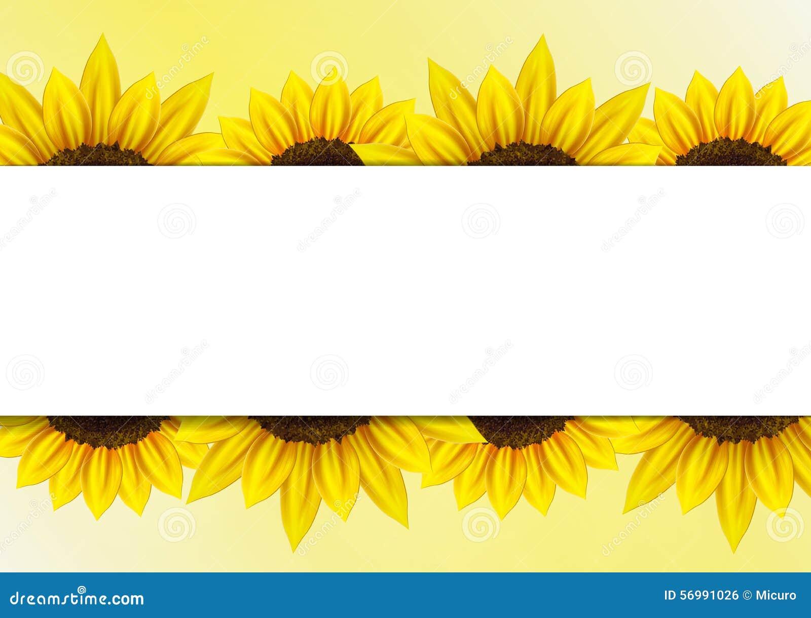 Sunflower Vector Background With Frame Stock Illustration Illustration Of September October 56991026