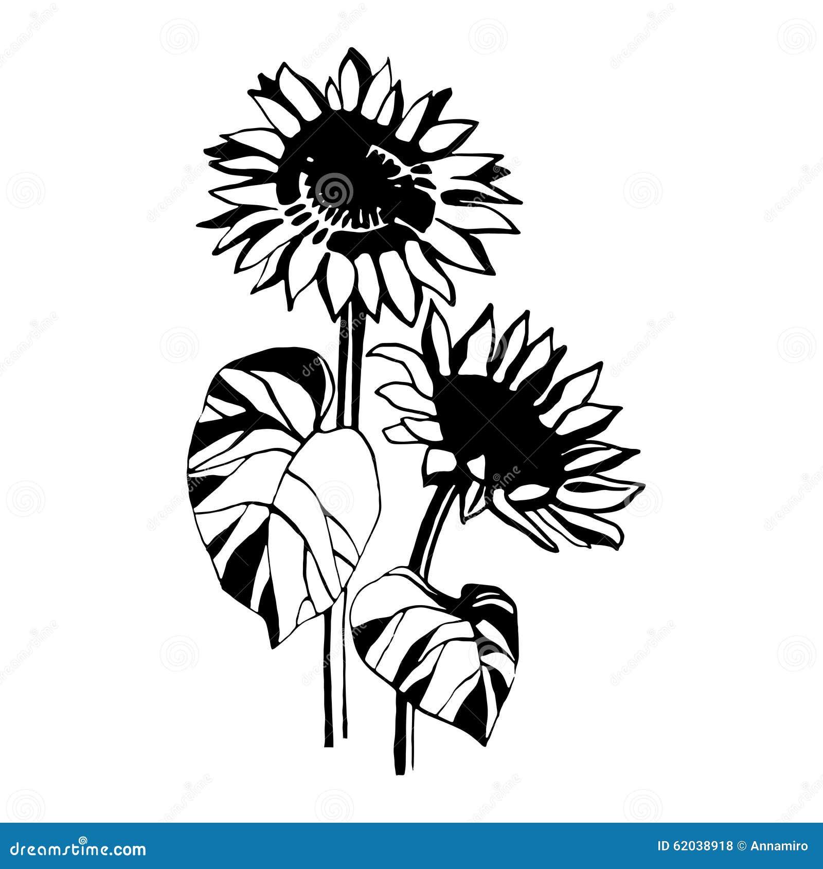 Sunflower Graphic Design