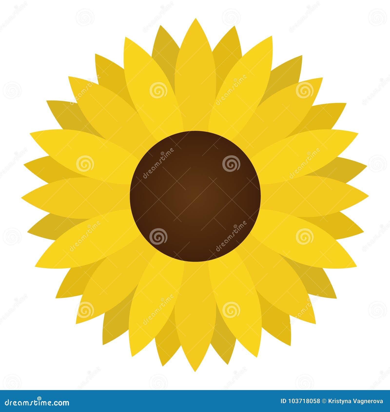 Sunflower Yellow Flower Vector Illustration Stock Vector