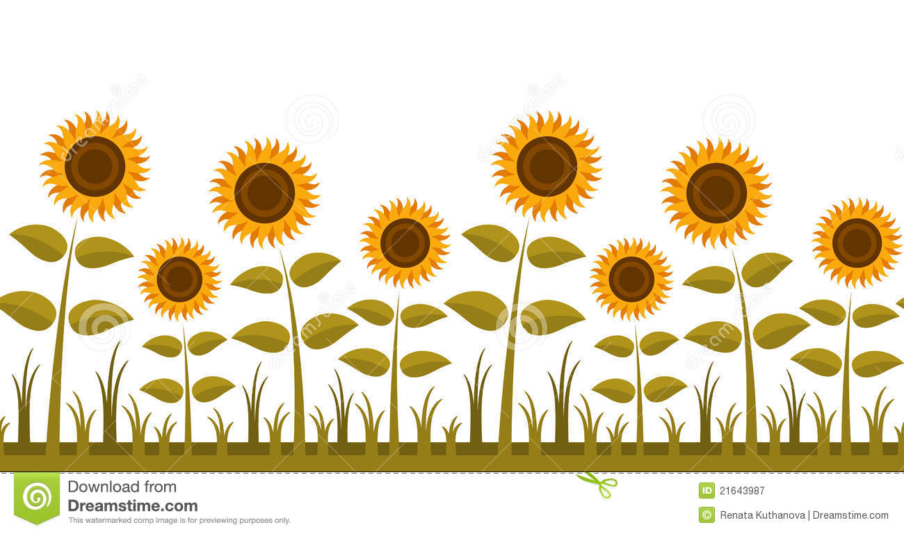 sunflowers border royalty free stock photography image