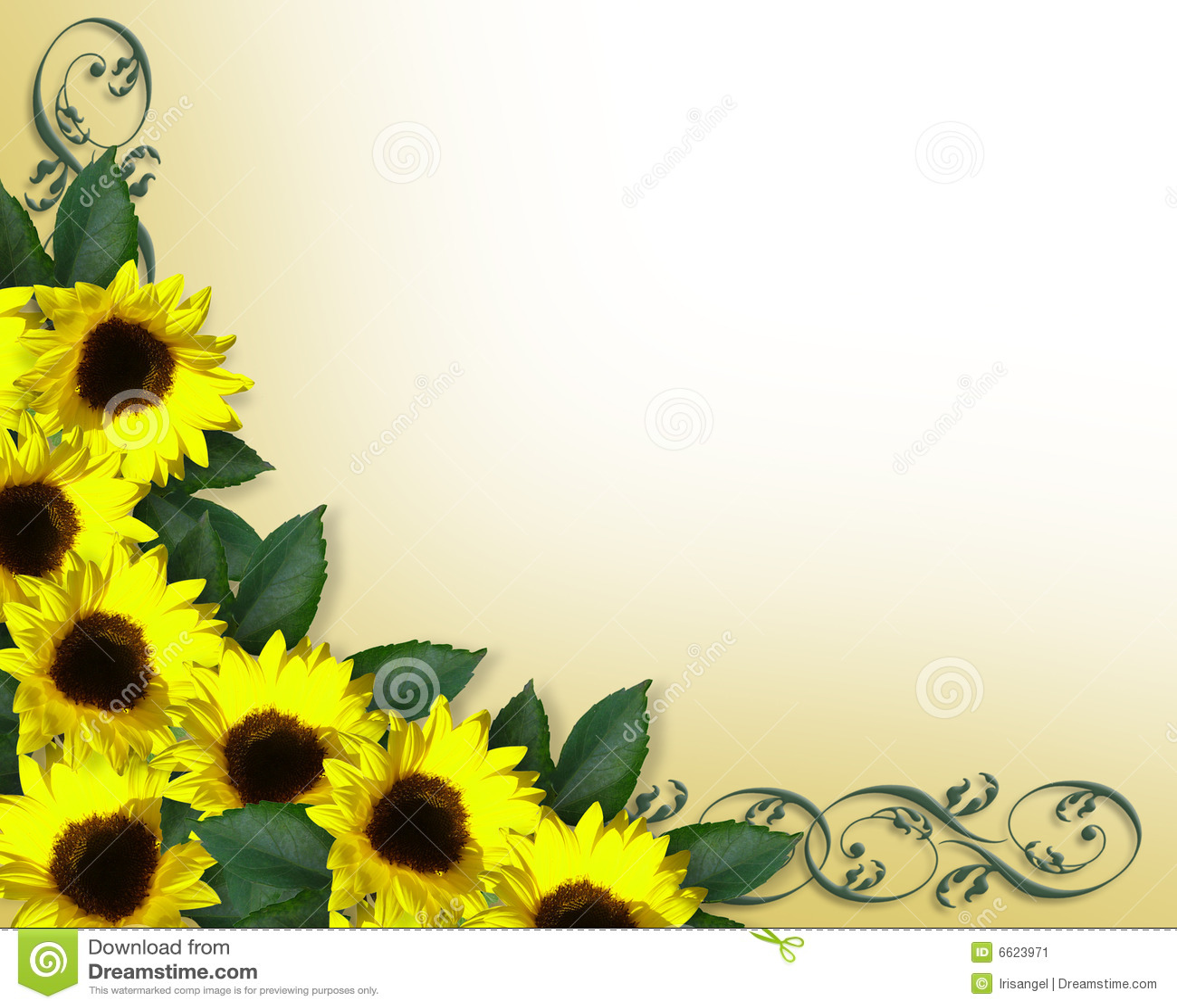 Sunflowers Border Yellow Spring
