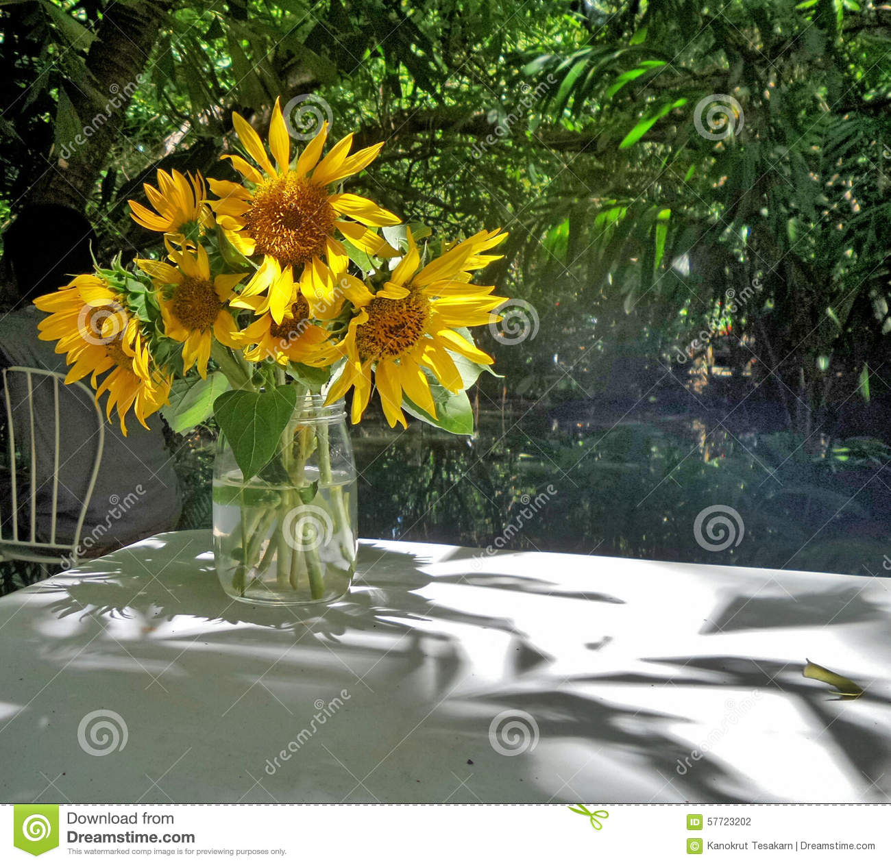 Sunflowers In Clear Glass Vase Under Shade Of Tree In The