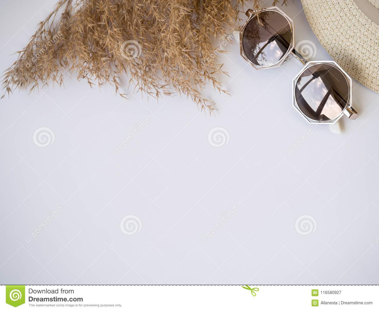 Sunglasses, Straw Hat And Dry Grass Top View Izolated Copy