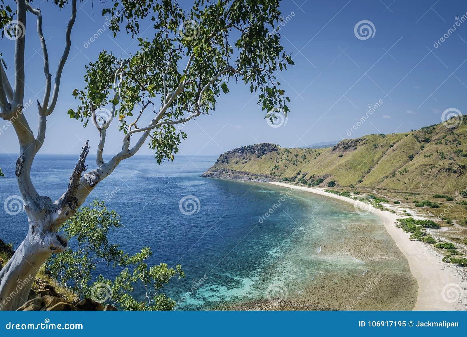 Sunie widok i wyrzucać na brzeg blisko Dili w wschodnim Timor leste