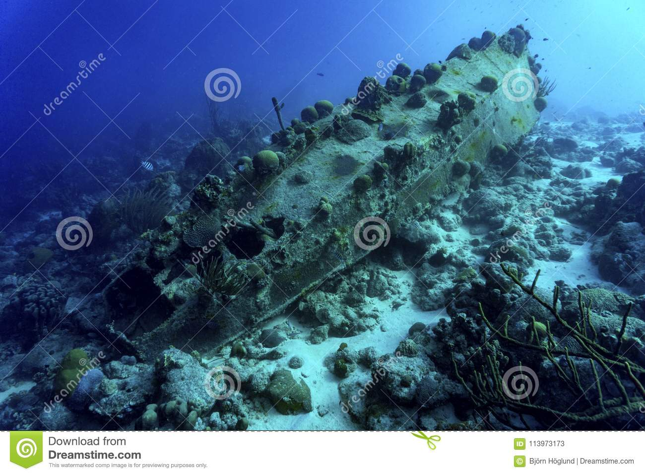 Sunken ship with coral