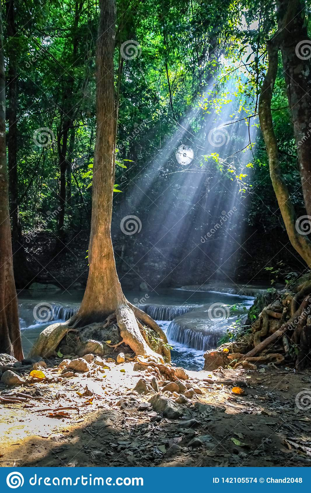 Sunlight streams through trees and a round spider web at Erawan national park with waterfalls in the background larger