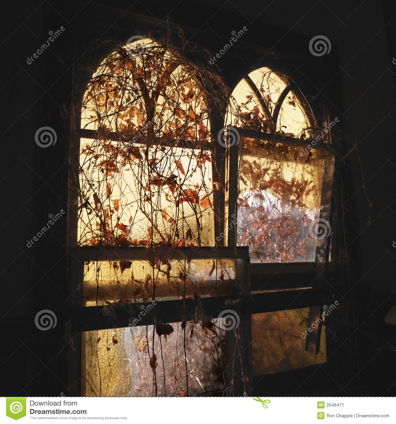 Sunlight through windows stock image image of outdoors for Sunlight windows