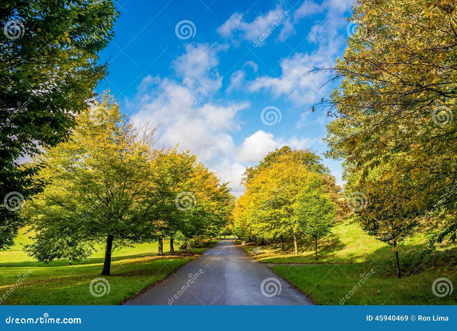 Sunnny ημέρα οδικών πάρκων