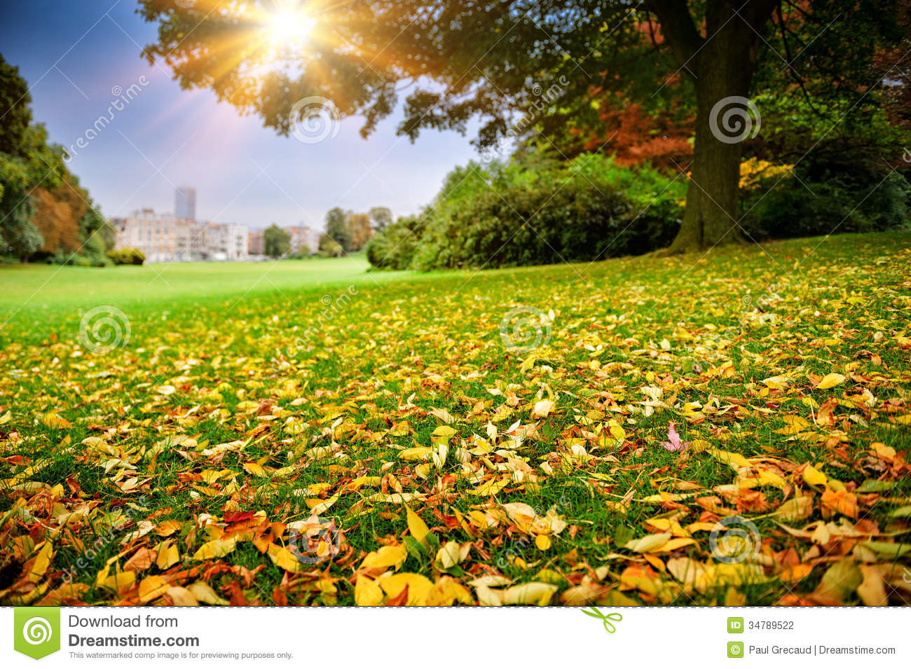 Sunny autumn day in city park stock photography image 34789522