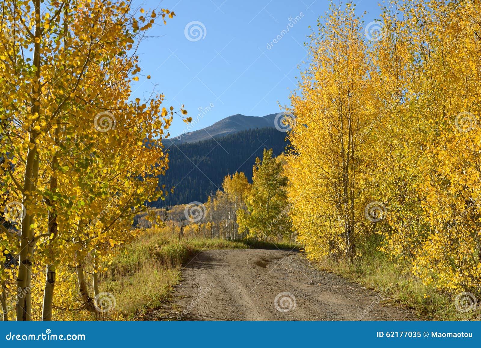 Sunny Autumn Mountain Road