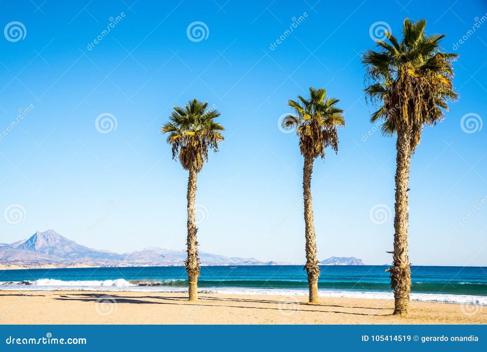 dating sivusto Alicante