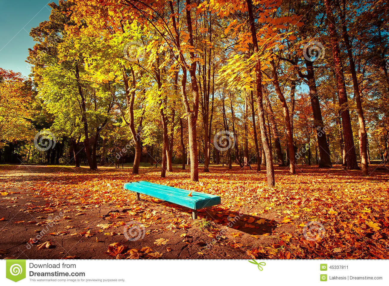 Sunny Day In Outdoor Park With Colorful Autumn Trees And ...