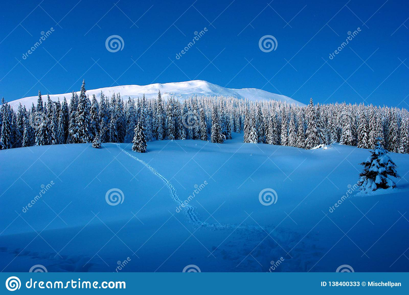 Sunny day in the winter mountains