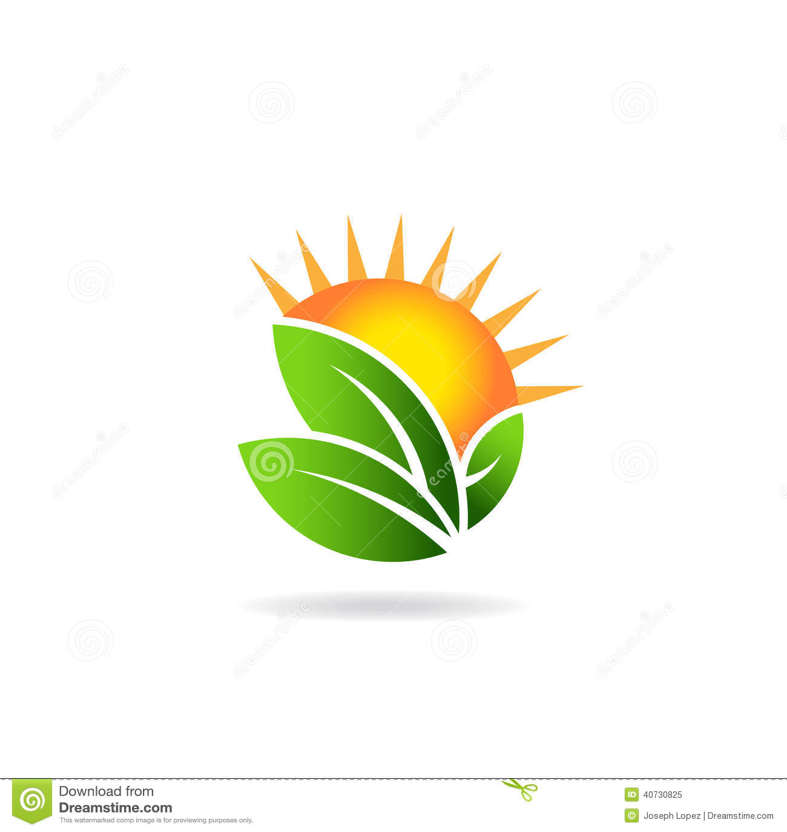 Sunny ecologica...