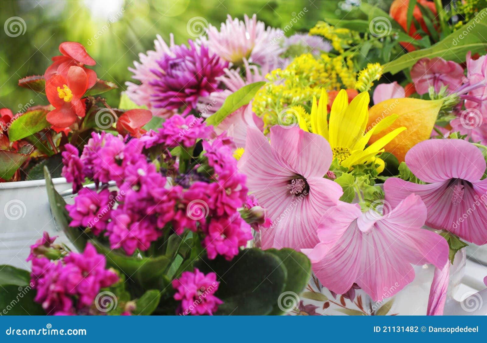 Sunny Garden Flower Arrangement Stock Photography Image