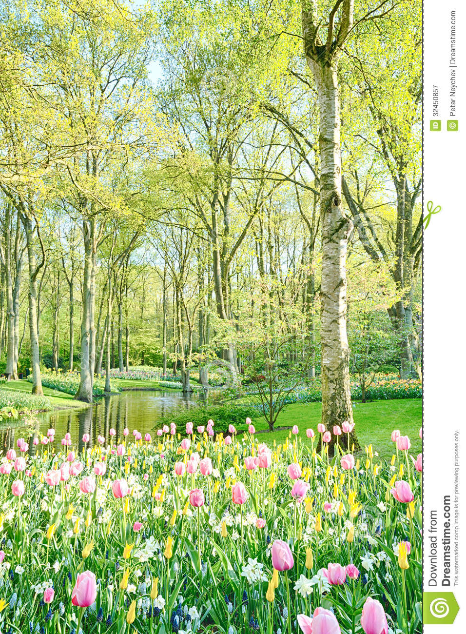 Sunny Garden With Trees And Flowers Royalty Free Stock
