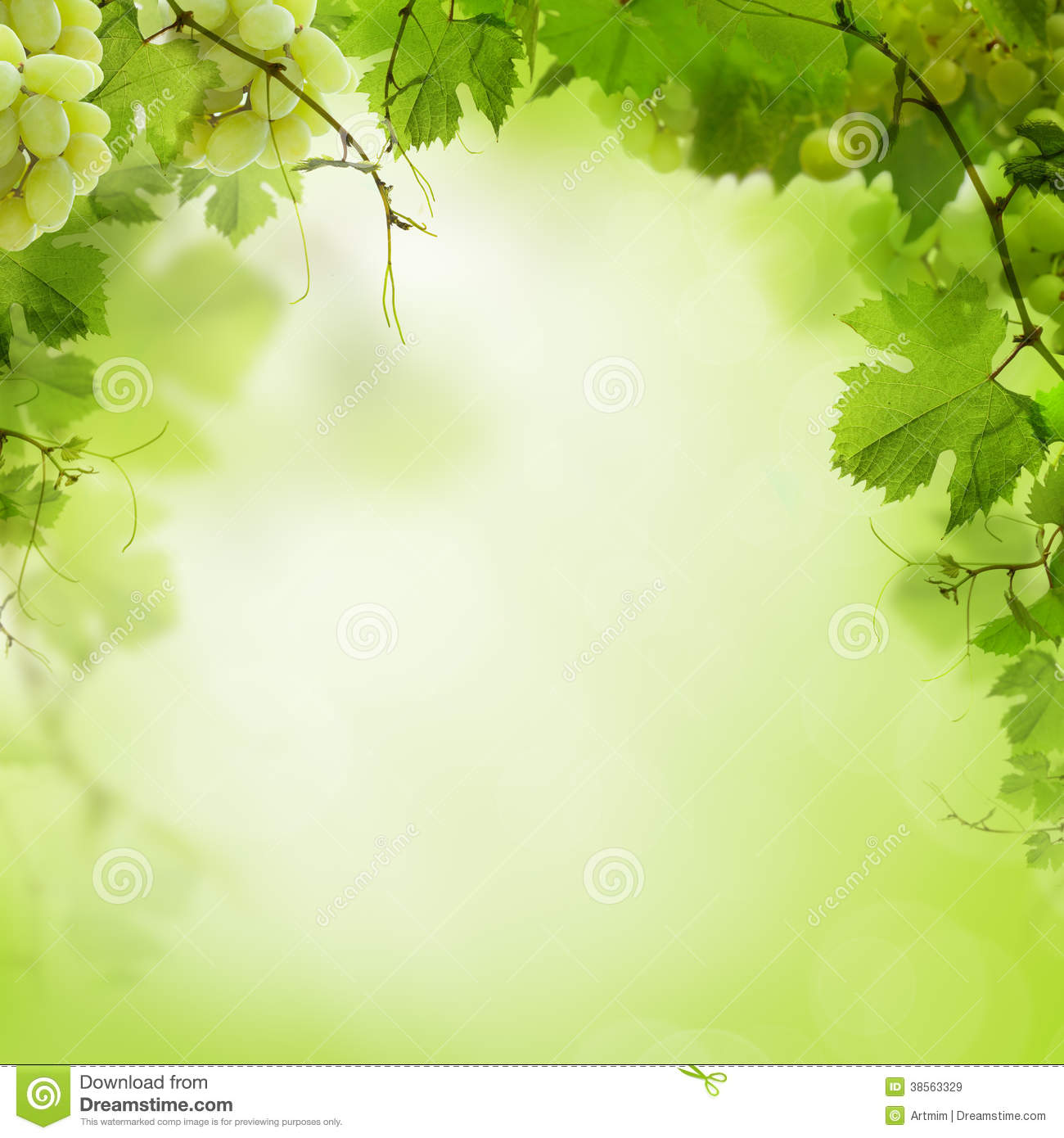 Sunny Green Background With Grape Vines Royalty Free Stock Images ...