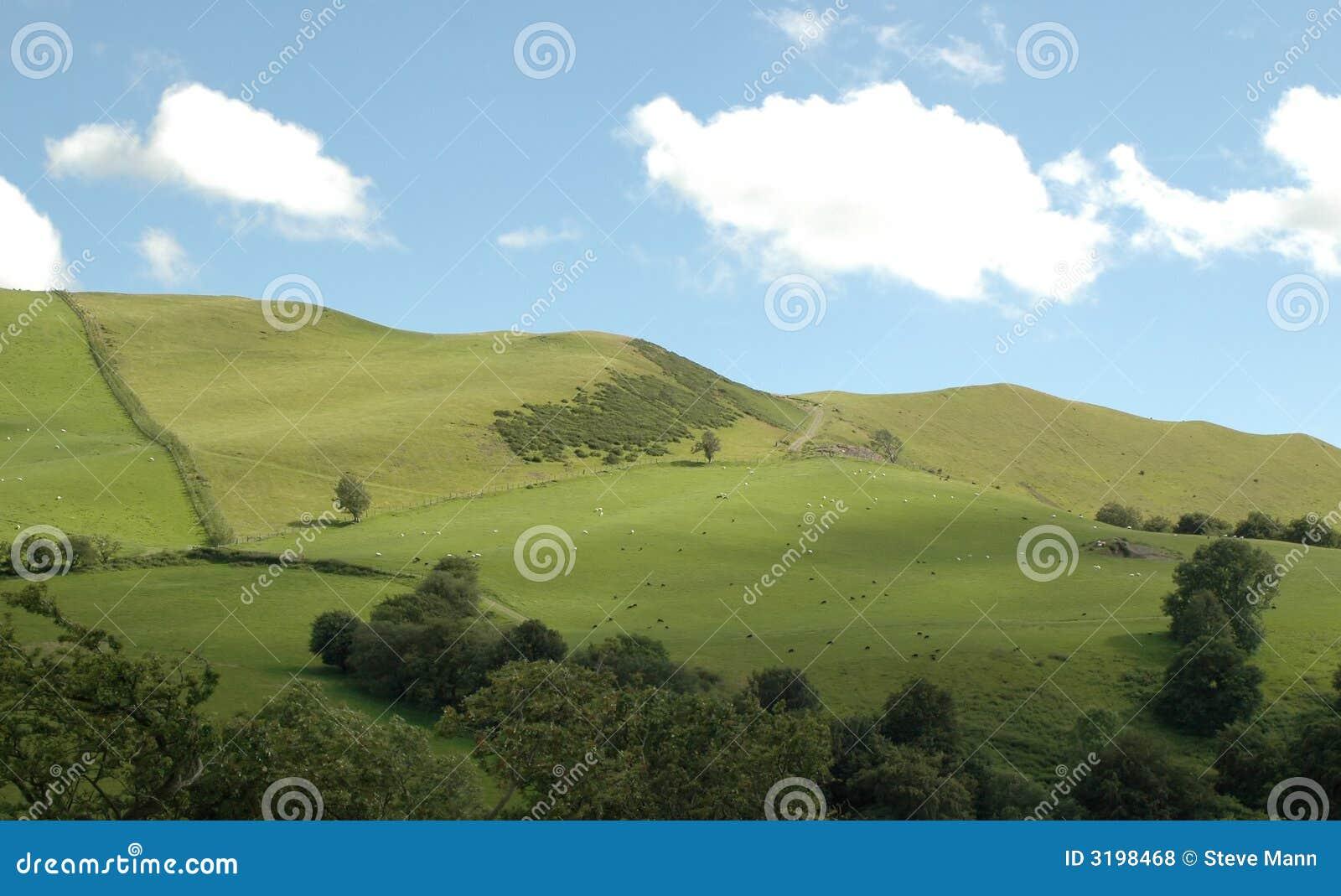 Landscaping A Sunny Hillside : Sunny hillside royalty free stock photos image