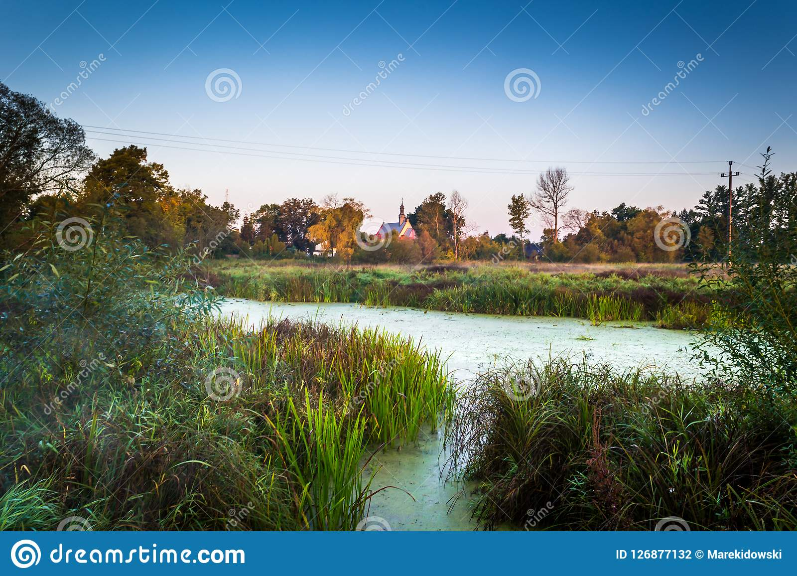 Sunny morning over a small river. River Grabia in central Poland Stock Photography