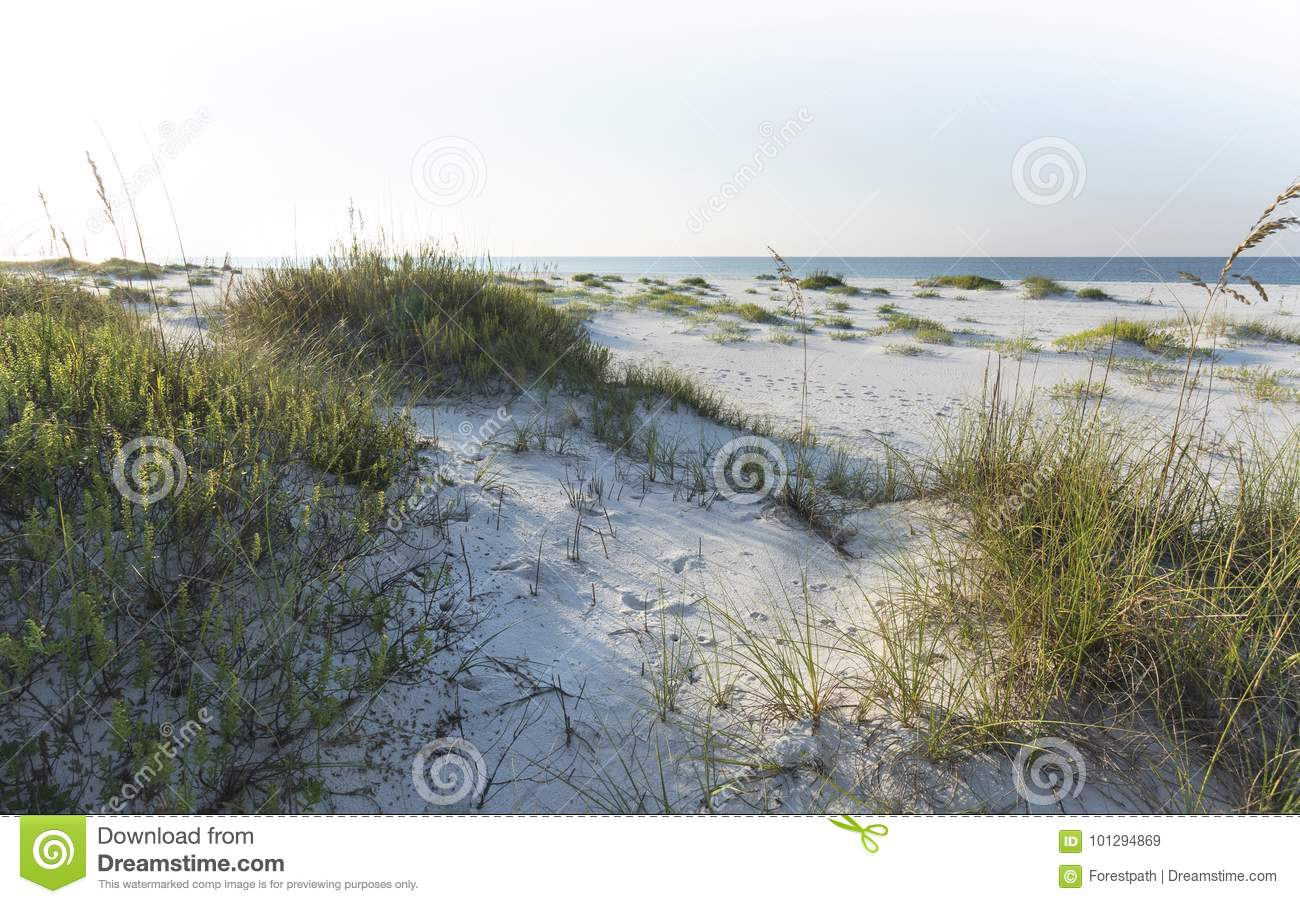 White Pages Pensacola Beach Florida