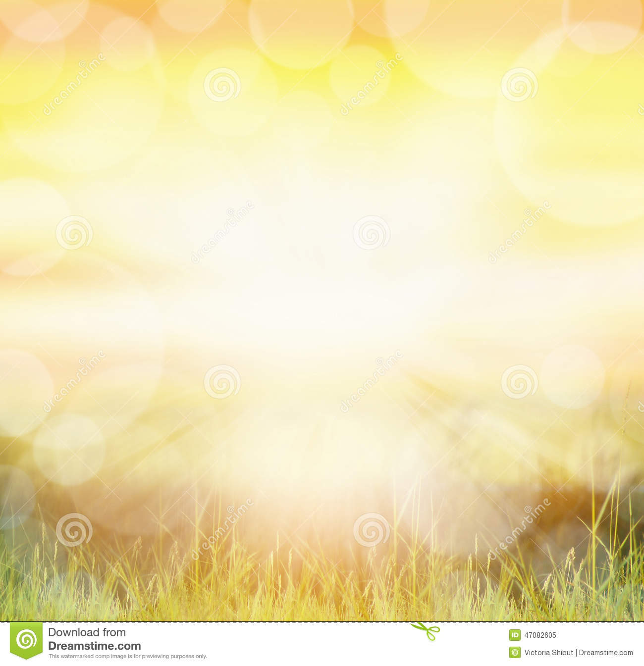 Sunny Natur Background With Bokeh And Sun Rays On Grass Stock Photo