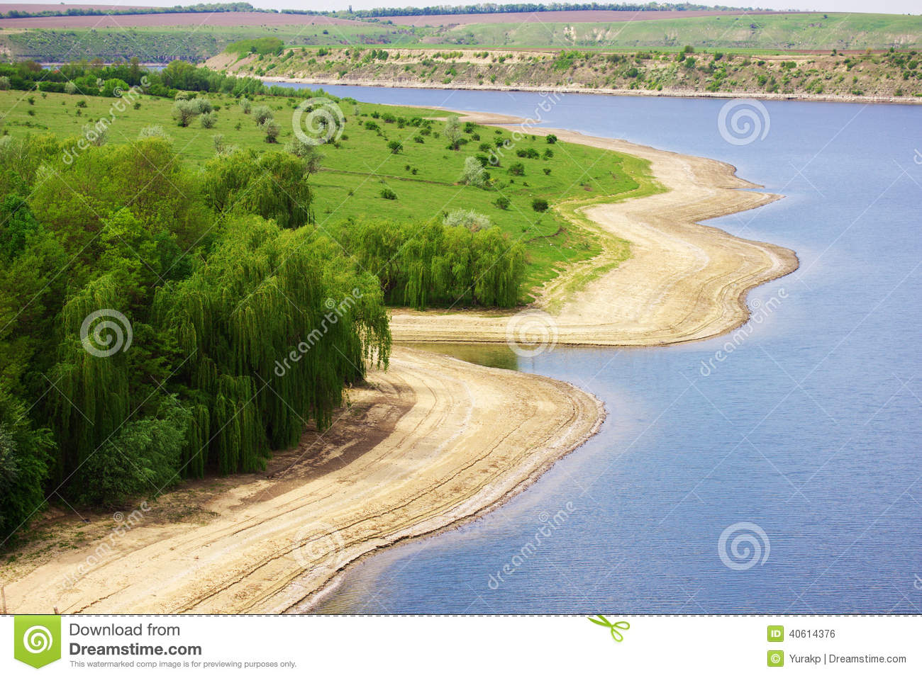 Sunny river beach with green trees