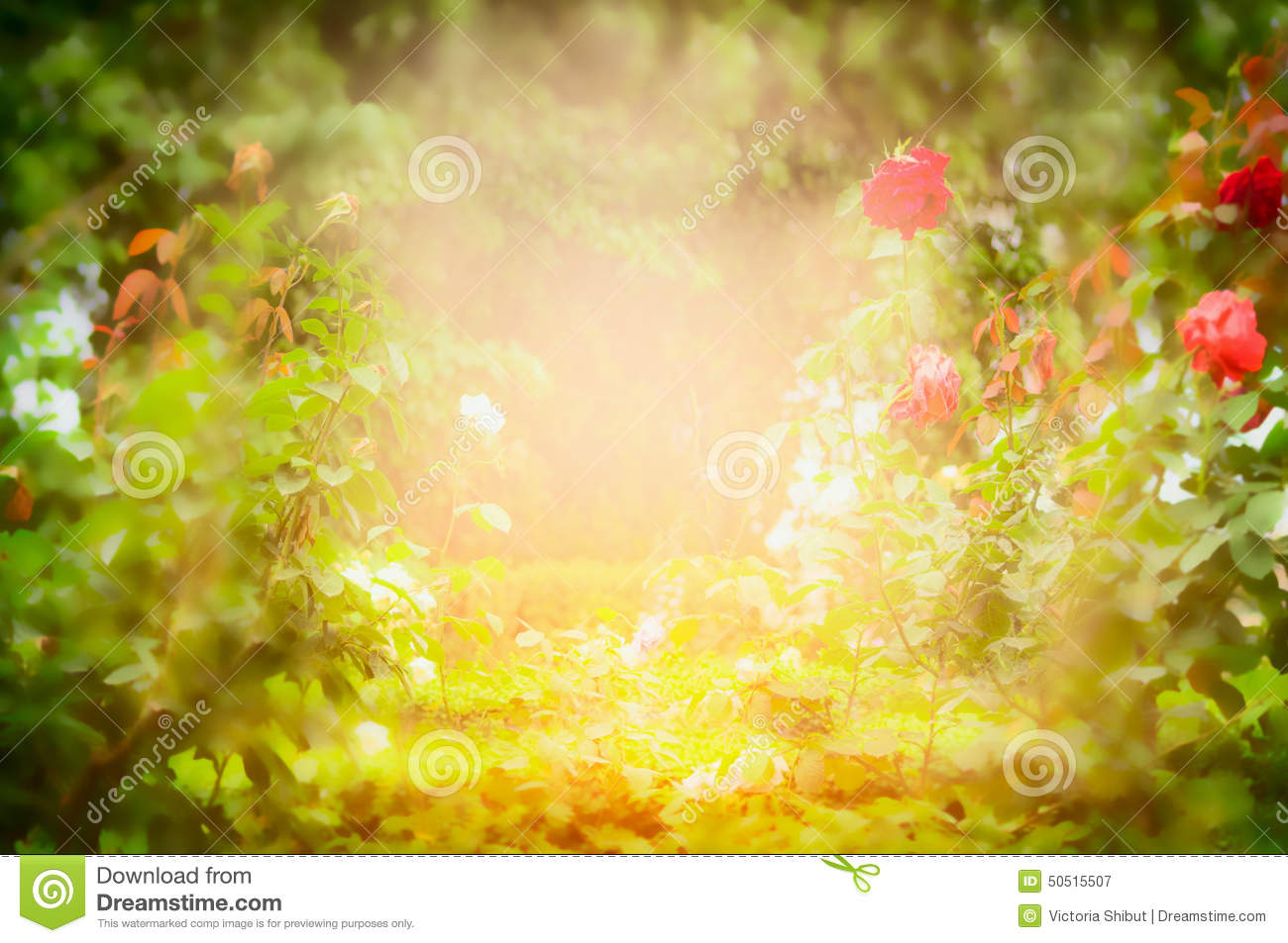 blurred outdoor backgrounds. Wonderful Outdoor Outdoor  In Blurred Backgrounds G