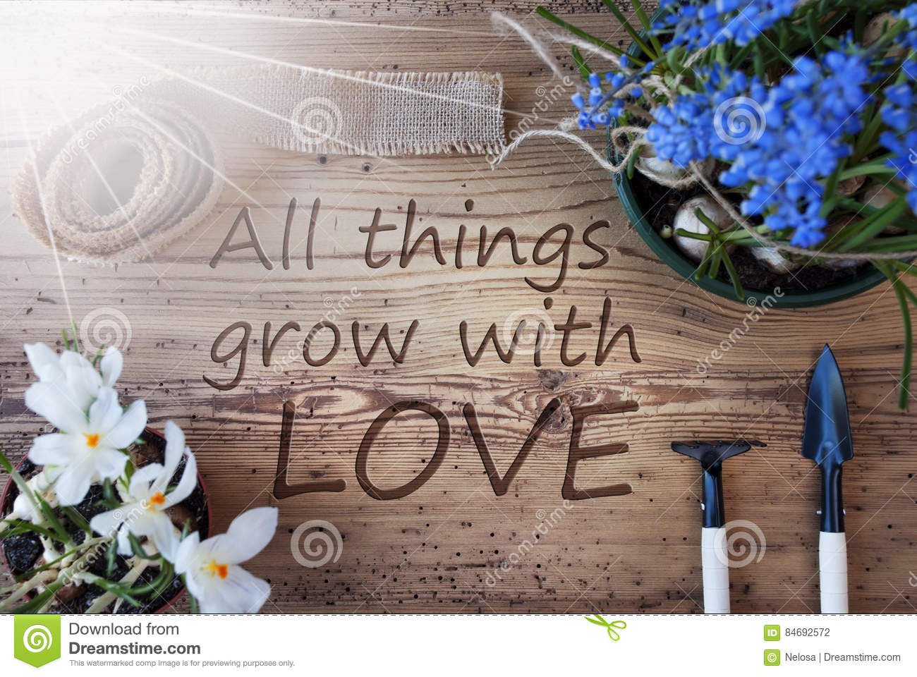 Sunny Spring Flowers, Quote All Things Grow With Love