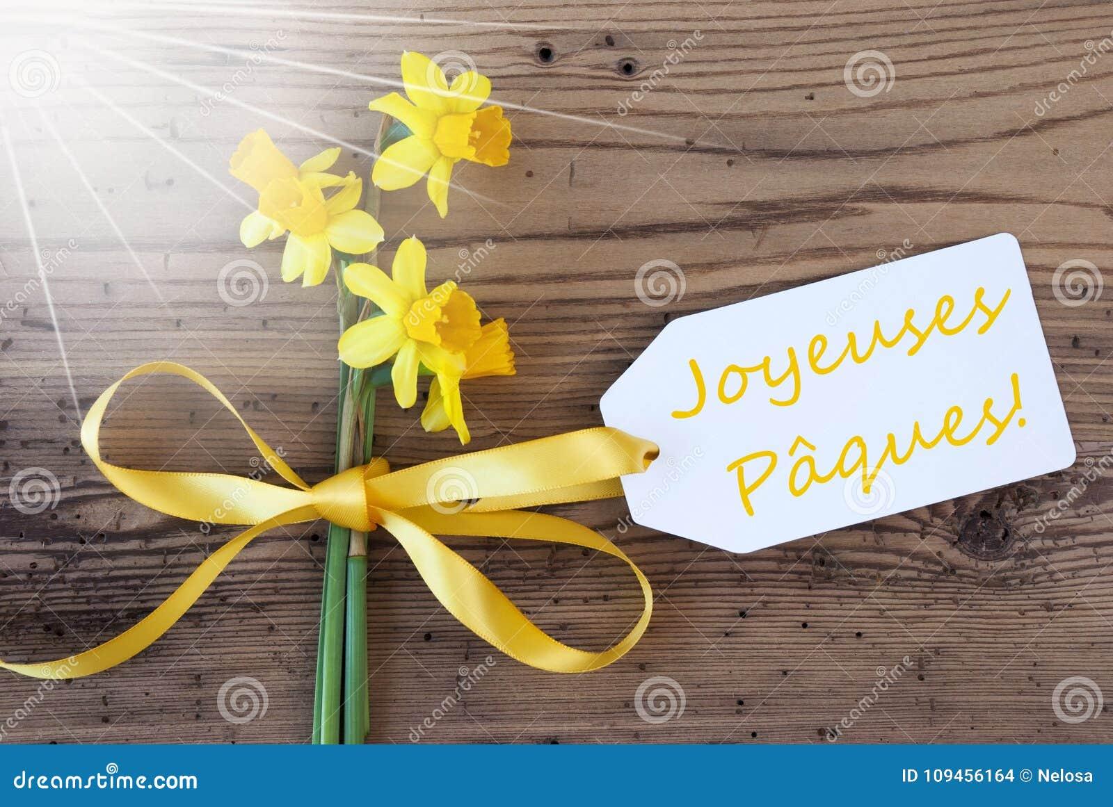 De coton fleurs sunny springs vert