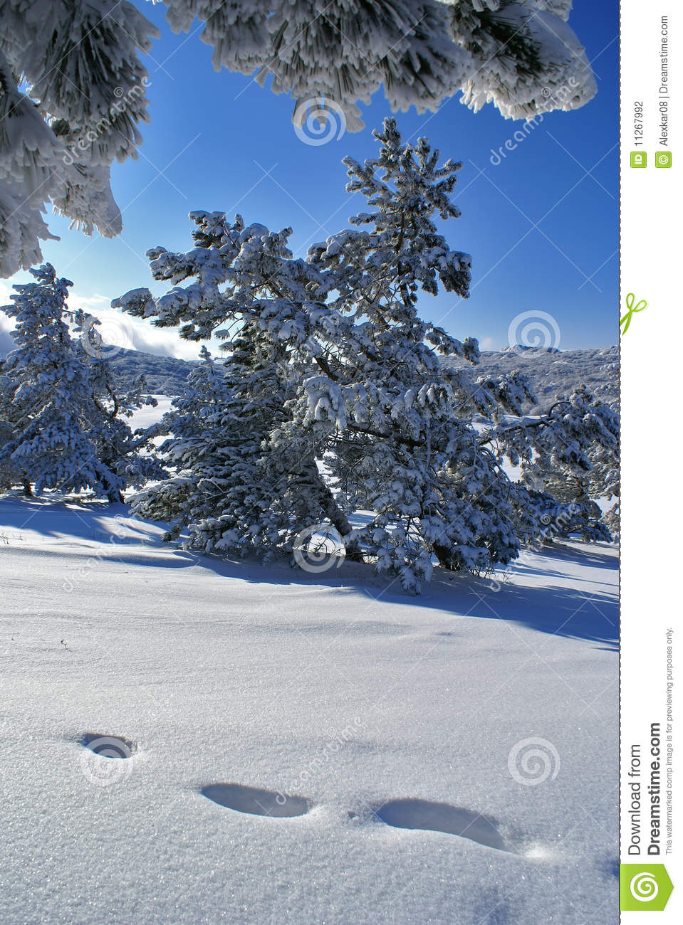 sunny winter day stock photography image 11267992