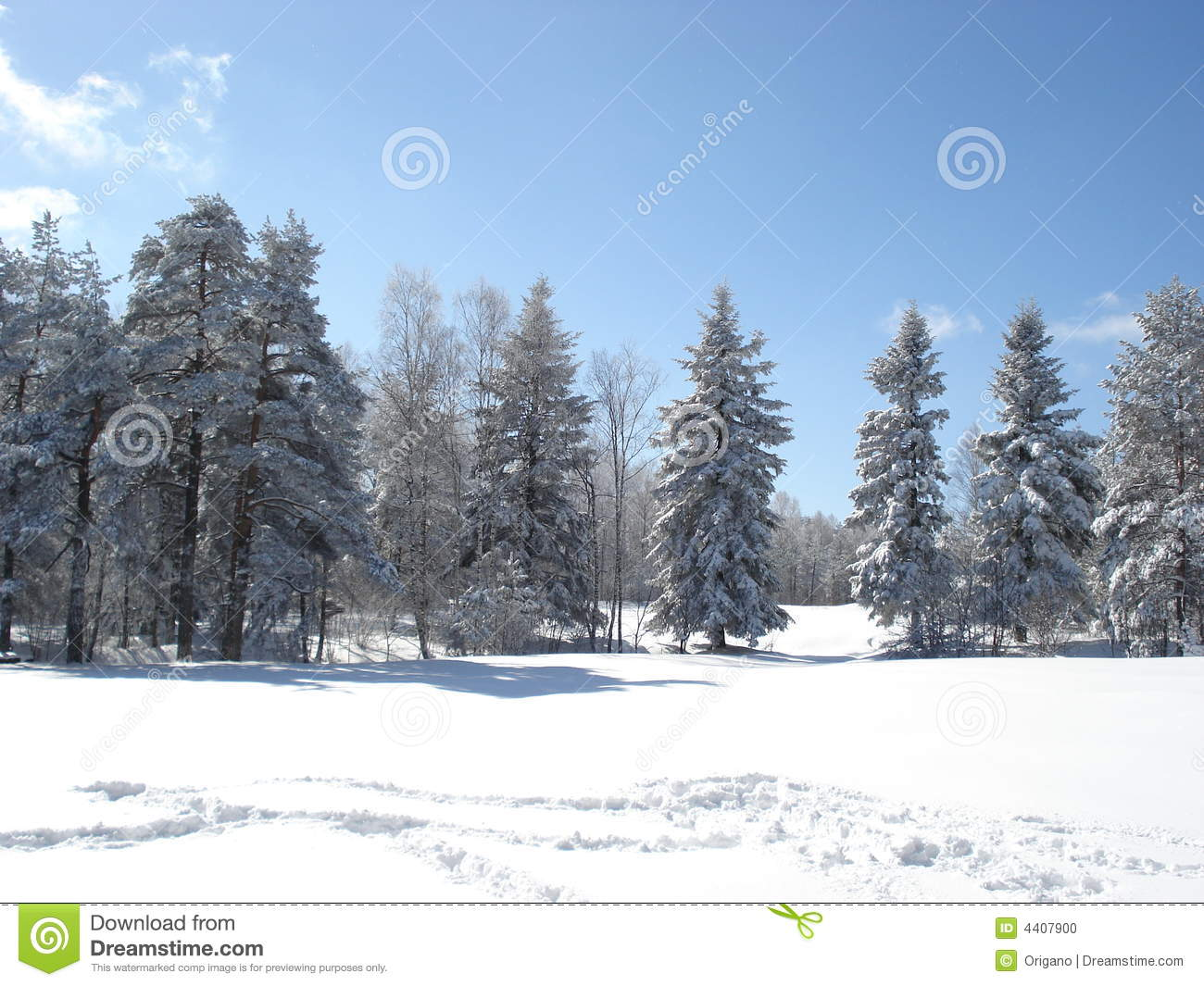 sunny winter day stock photo