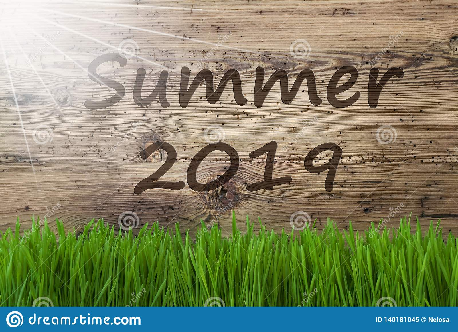 Sunny Wooden Background, herbe, été anglais 2019 des textes