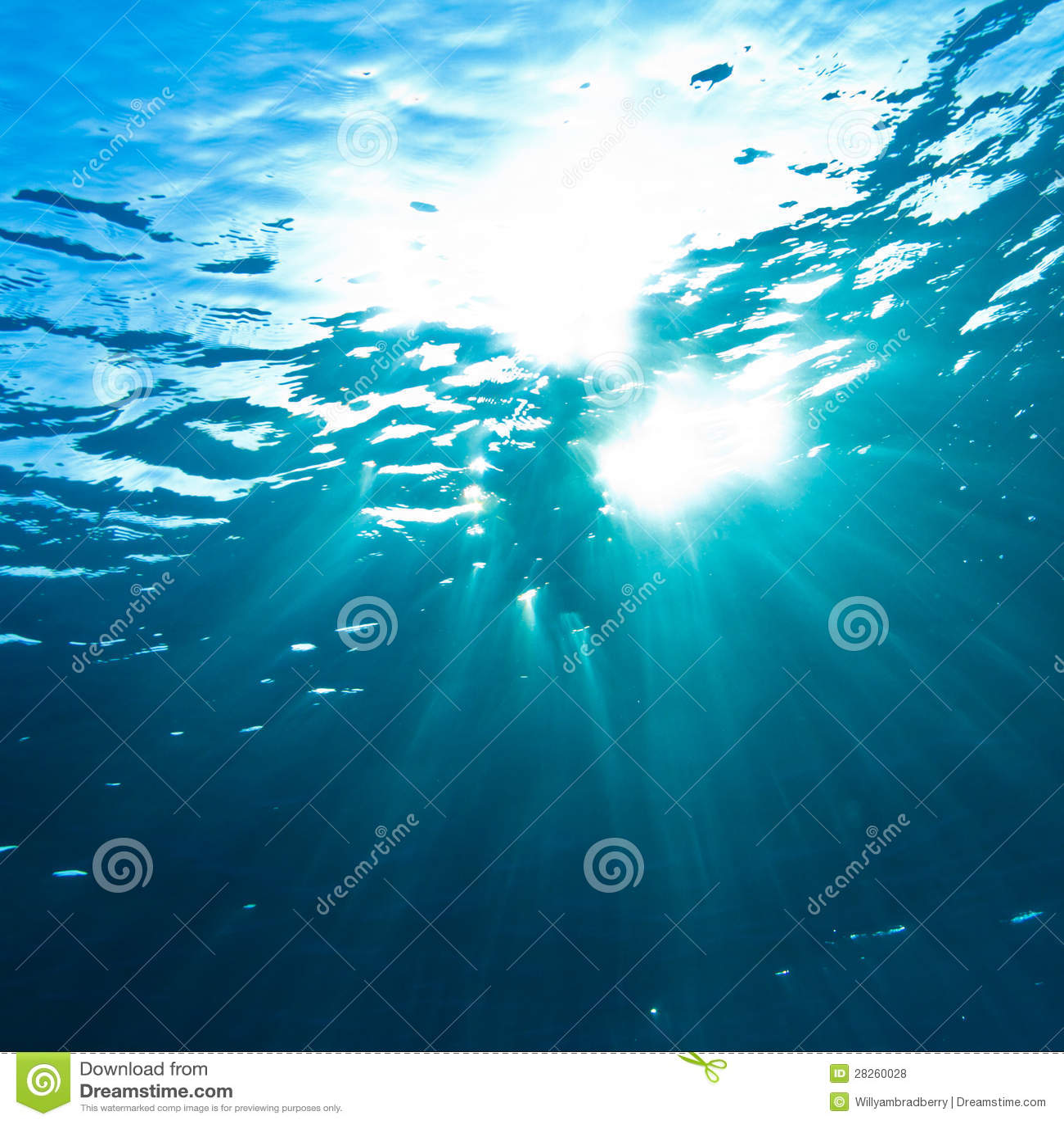 Sunrays que se rompen a través de la superficie del agua